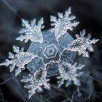 Photo: Alexey Kljatov, Creative Commons