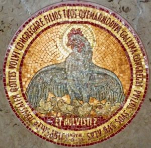 HM33-Hen-mosaic